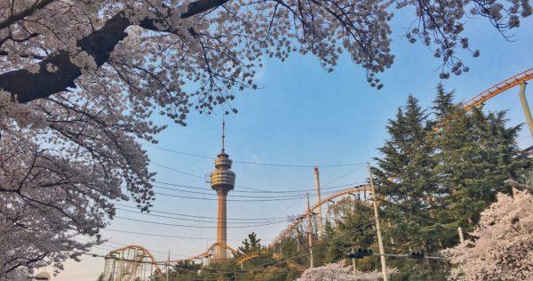 Seoul Fun Park